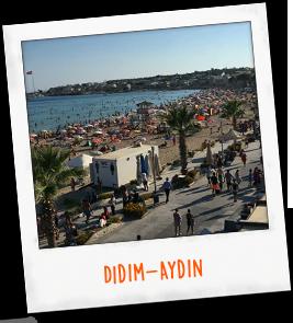 Didim-Aydin
